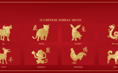 Chinese New Year, The Year of the Dog brings 200 Million spenders, Chinese Zodiac, JCDecaux Blog